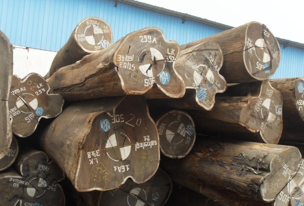 木材进口现场图